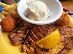 Floyd's grilled fish