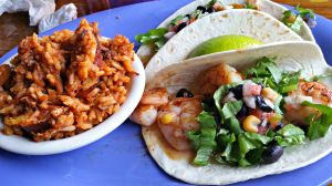Hurricane shrimp tacos